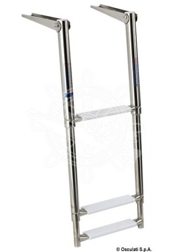 Telescopic ladder for gangplank